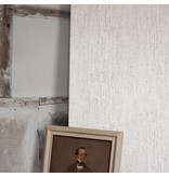 Cole-Son Crackle Grijs En Lichtgrijs 92/1002 Behang
