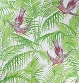 Matthew-Williamson Sunbird Ruby/Kiwi W654302 Behang