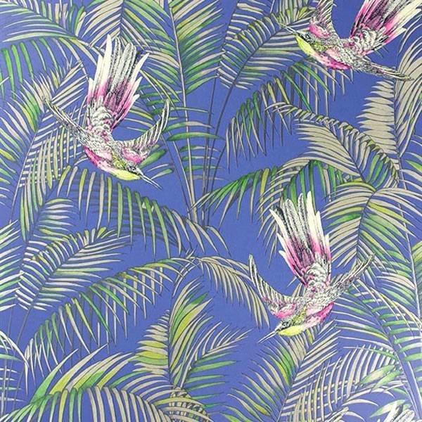 Sunbird Blue/Fuchsia/Metallic W654304