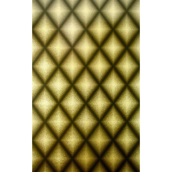 Chameleon Goud Met Zwart W6305-05