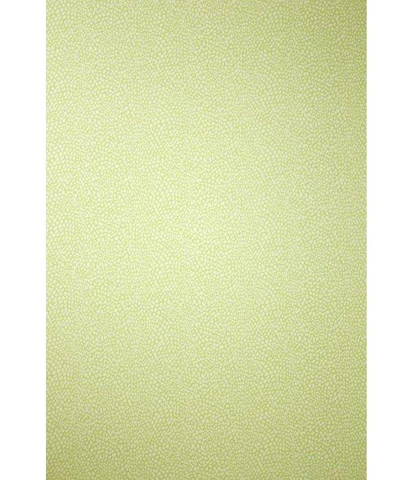 Osborne-Little ORIOLE Light Goldenrod Yellow W6491-05 Behang