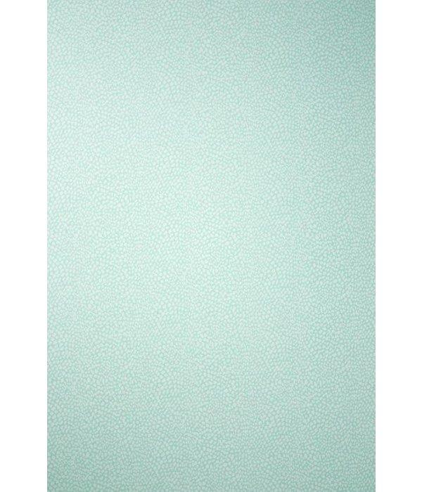 Osborne-Little ORIOLE Pale Turquoise Wallpaper