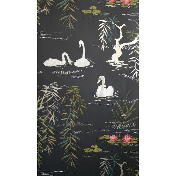 Swan Lake Zwart En Goud NCW4020-04
