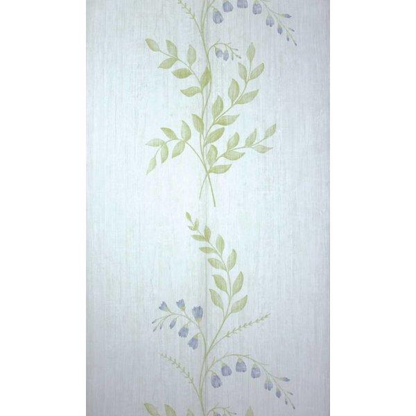 Aubourn White/Blue NCW4105-01