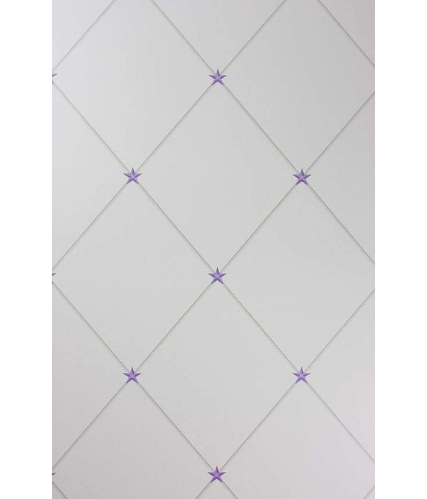Nina-Campbell Torosay Purple/Stone NCW4151-01 Behang