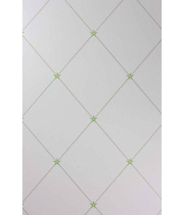 Nina-Campbell Torosay Green/Ivory Wallpaper