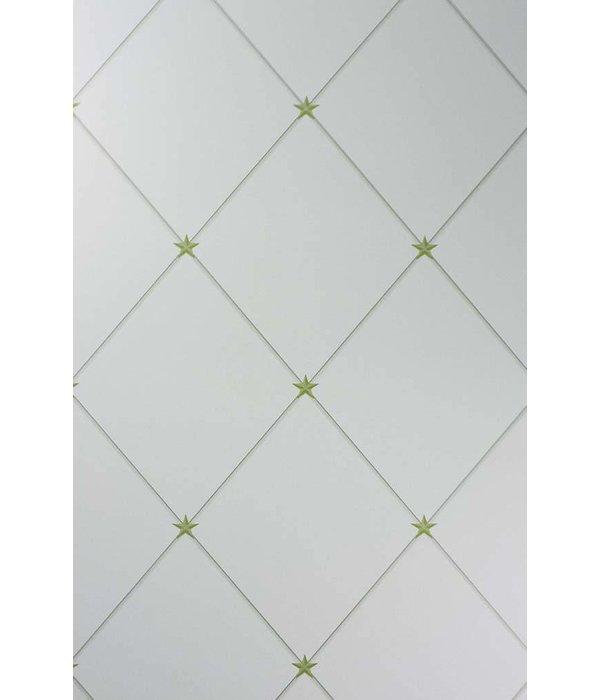 Nina-Campbell Torosay Gold/Aqua Wallpaper