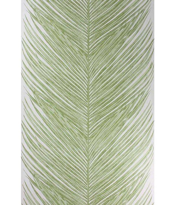 Nina-Campbell Mey Fern Green Wallpaper