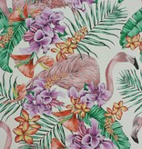 Matthew-Williamson FLAMINGO CLUB Light Gray Multi Wallpaper