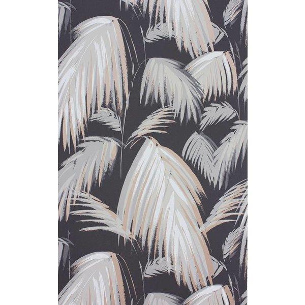 TROPICANA Black Silver W6801-04