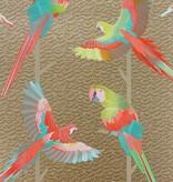 Matthew-Williamson ARINI Brown multi Color Wallpaper
