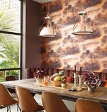 Matthew-Williamson Cocos Black/Met. Terracotta Wallpaper