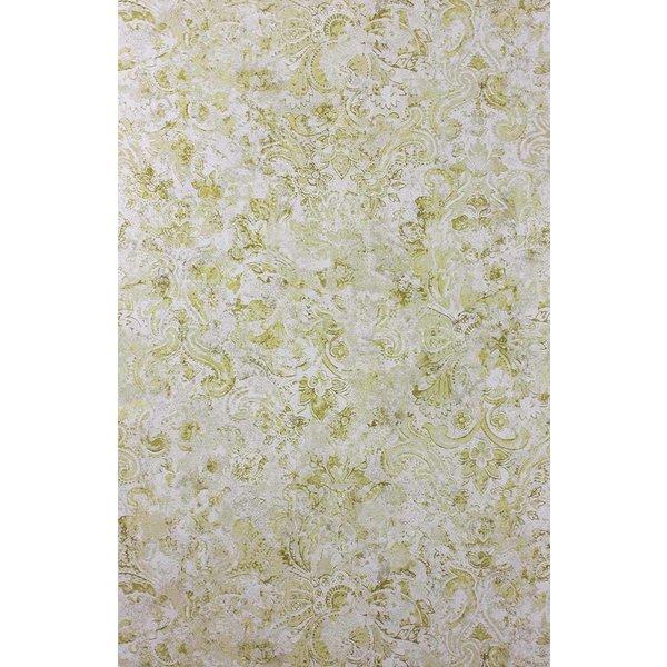Latania Pale Chartreuse