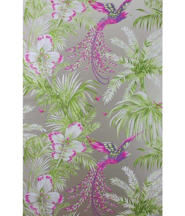 Matthew-Williamson Bird of Paradise Kiwi/Violet W6655-03 Behang