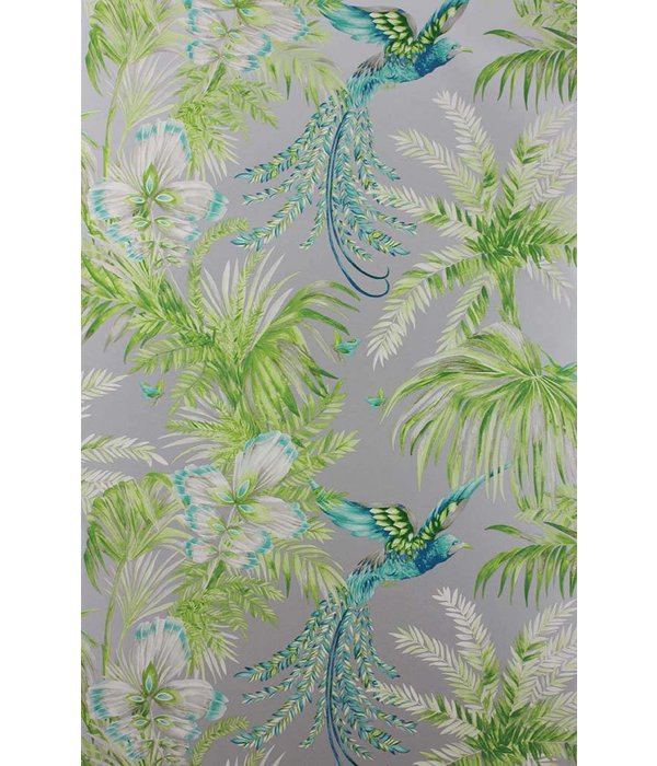 Matthew-Williamson Bird of Paradise Jade/Kiwi Wallpaper