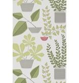 Miss-Print House Plants Wallpaper Olive MISP1176