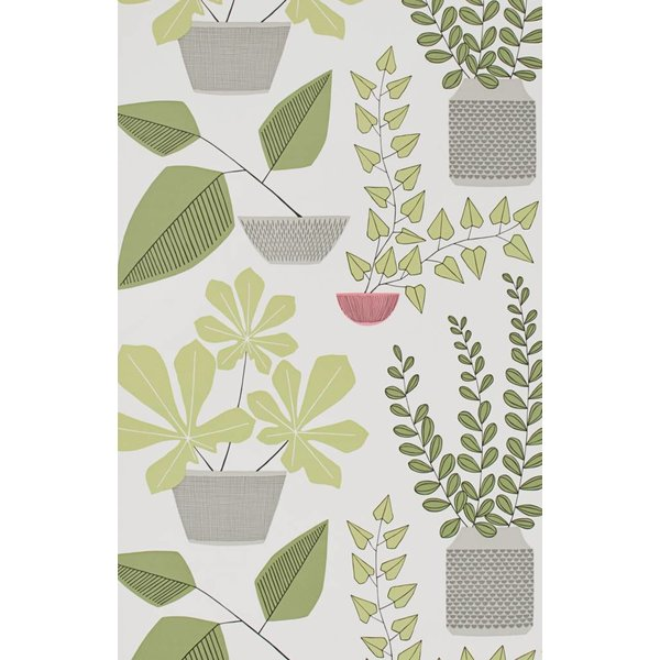 House Plants Wallpaper Olive MISP1176