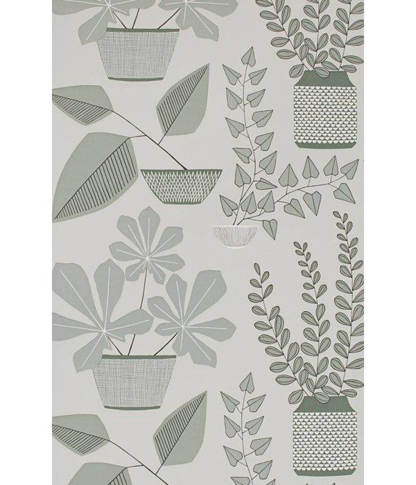 Miss-Print House Plants Wallpaper Brampton MISP1177
