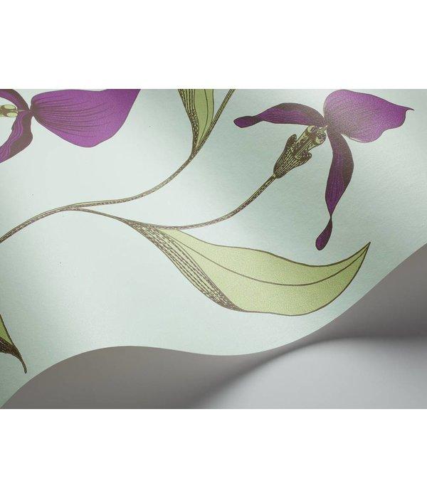 Cole-Son Orchid Lichtgroen En Donkerpaars 66/4027 Behang