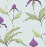 Cole-Son Orchid Lichtgroen En Donkerpaars 66/4027 Wallpaper