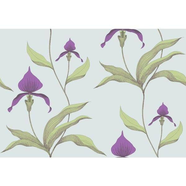 Orchid Lichtgroen En Donkerpaars 66/4027