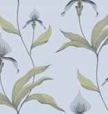 Cole-Son Orchid Lichtblauw En Turquoise 66/4026 Wallpaper