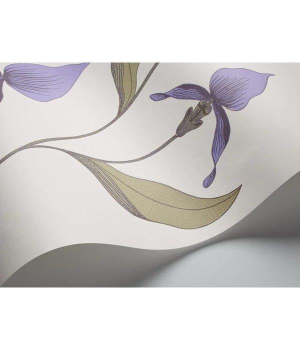 Cole-Son Orchid Lichtgrijs En Paars 66/4024 Wallpaper