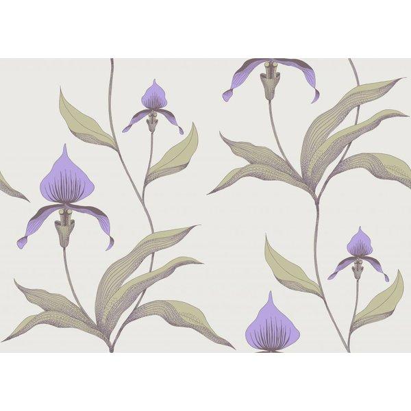 Orchid Lichtgrijs En Paars 66/4024