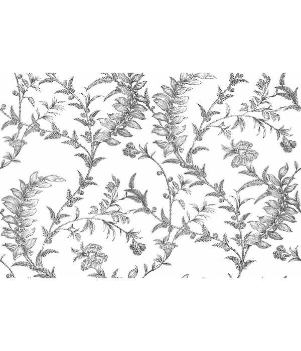 Cole-Son LUDLOW Wit En Zwart 88/1005 Wallpaper