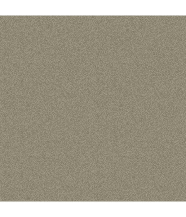 Cole-Son Pebble 106/2020 Wallpaper
