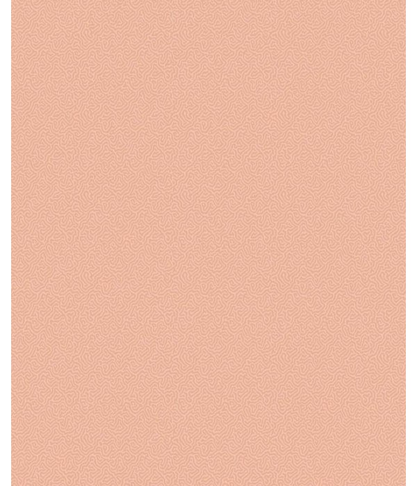 Cole-Son Coral 106/5075 Behang