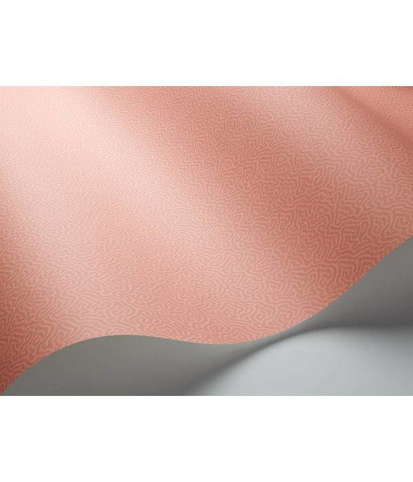 Cole-Son Coral 106/5075 Wallpaper