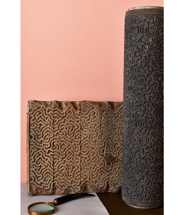 Cole-Son Coral 106/5076 Wallpaper