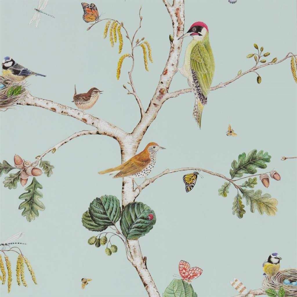 Sanderson WOODLAND CHORUS 215706 Wallpaper De Mooiste Muren