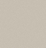 Cole-Son Curio Vermicelli 107/4019
