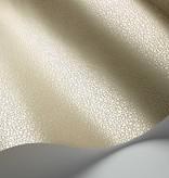 Cole-Son Curio Quartz Goldstone 107/9042