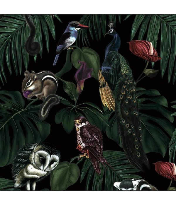 Witch-and-Watchman Amazonia Dark wallpapper
