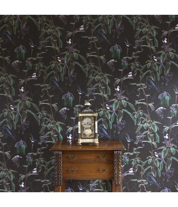 Witch-and-Watchman Folia Dark Wallpaper