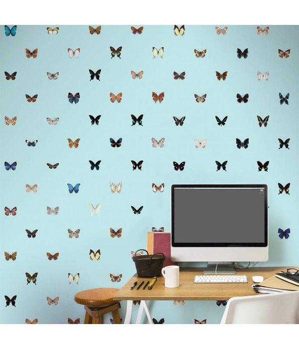 Naturalis Originals Butterflies - cool colors NATR10001015