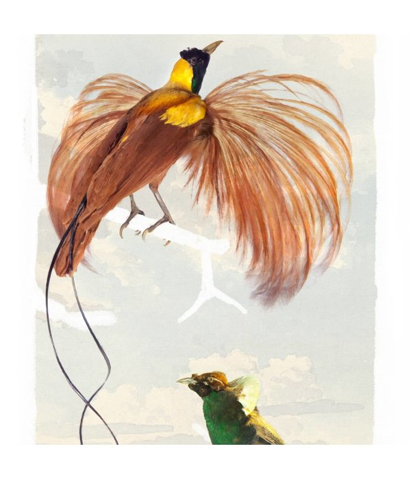 Naturalis Originals Birds of paradise in chinoiserie style NATR00210916