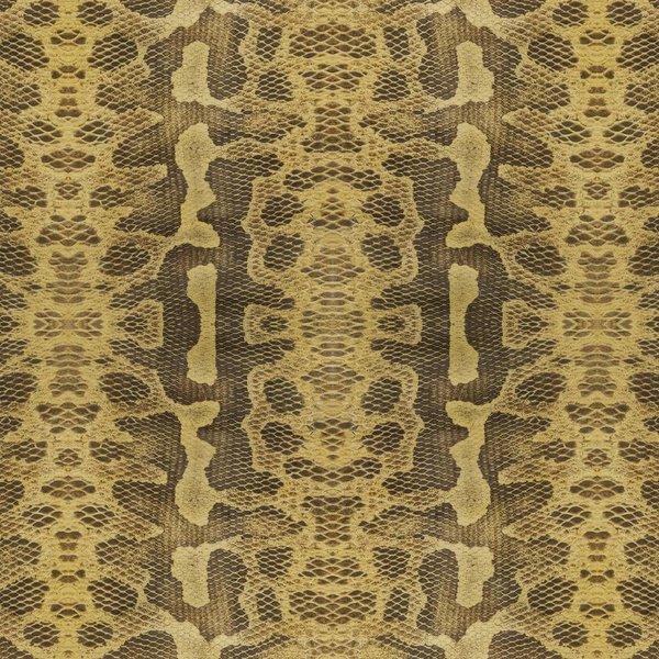 Snake skin NATF00130916