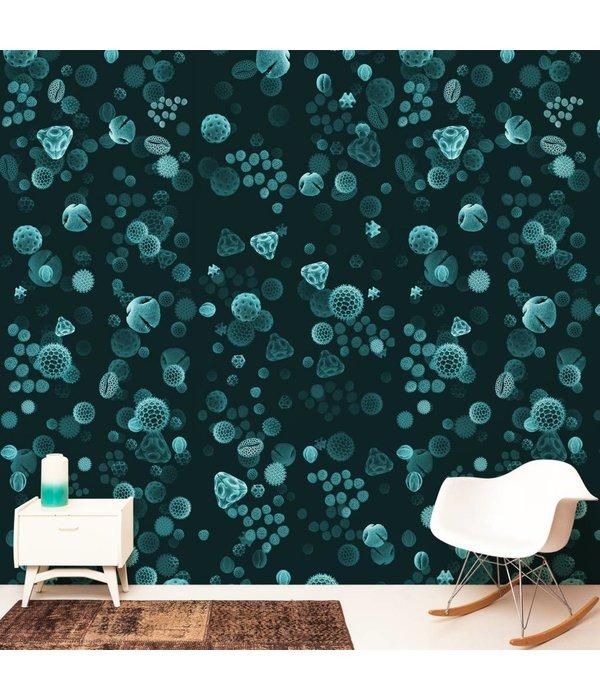 Naturalis Originals Pollen - aqua NATR00131015