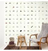 Naturalis Originals Little paintings of animals by Kawahara Keiga NATR00030117