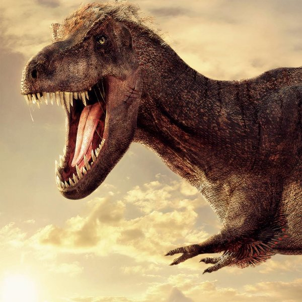 Tyrannosaurus rex (T.rex) NATM01090916