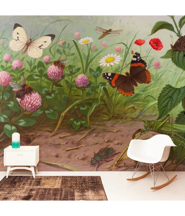 Naturalis Originals Insects by M. A. Koekkoek NATM01041015