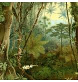 Naturalis Originals Tropical rainforest (Tropenwald) NATM00100916