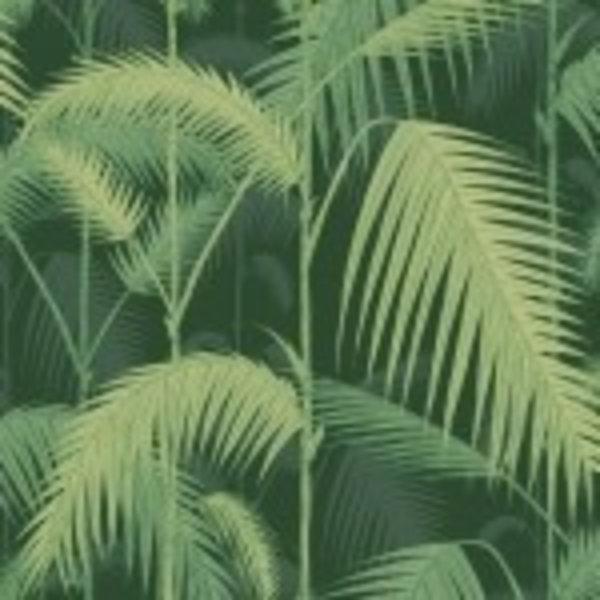 Icons Palm Jungle 112/1003