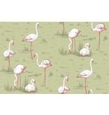 Cole-Son Icons Flamingos 112/11038