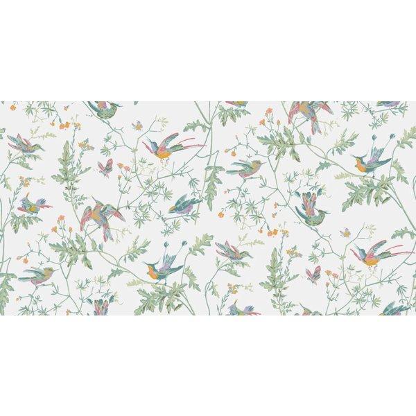 Hummingbirds 112/4016