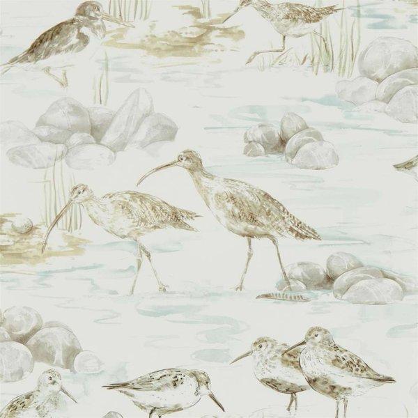 ESTUARY BIRDS 216494
